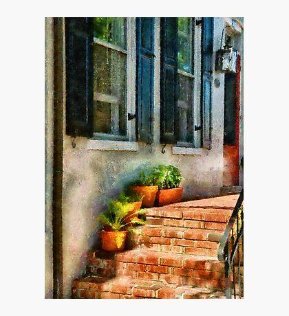 Flowers - Plants - The Stoop  Photographic Print