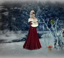 Christmas Time by Vanessa Barklay
