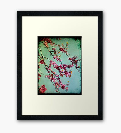 I saw you today! Framed Print