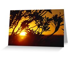 ~ AMBER SKY ~ Sunset over Ballina Greeting Card