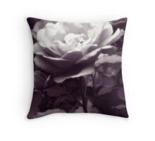 A Solitary Rose Throw Pillow