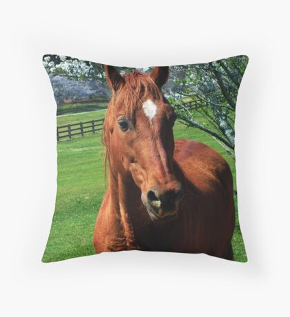 Red Equine Throw Pillow