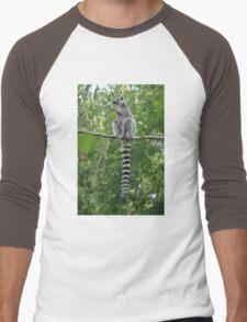 Ring-tailed Lemur Men's Baseball ¾ T-Shirt