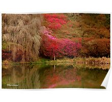 SPRING IS HERE - Magoebaskloof South Africa Poster