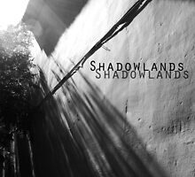 Shadowlands Calendar Cover by ragman