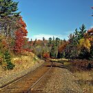 Steel rail to Agawa Canyon, Ontario Canada by Eros Fiacconi (Sooboy)