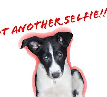Not Another Selfie - Dog! by SusieJM
