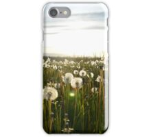 Sun Field iPhone Case/Skin