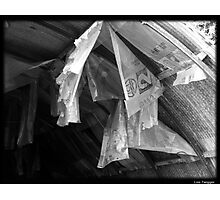 Hanging Plastic Photographic Print