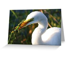 Great White Egret and the Lizard Greeting Card