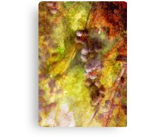 Kitchen - Wine - Grapes Canvas Print