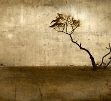 The Tree by charlena
