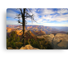"""The Grand View"" Metal Print"