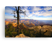 """The Grand View"" Canvas Print"