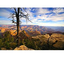 """The Grand View"" Photographic Print"