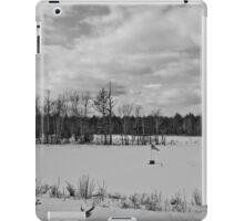 Frozen Tribute iPad Case/Skin