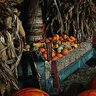Fall Harvest by lynell