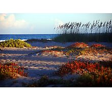 Sand Dunes at Cocoa Beach, FL  Photographic Print