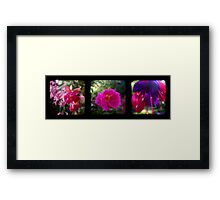 Garden TTV Triptych Framed Print
