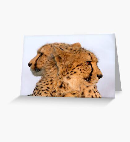 Two Headed Cheetah? Greeting Card