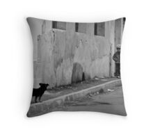 OnePhotoPerDay Series: 275 by C. Throw Pillow
