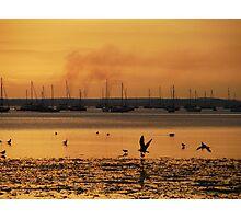 Poole Photographic Print