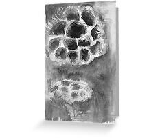 Lotus Seed Pod Greeting Card