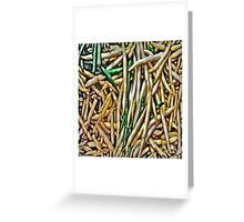 Vegetables #2 Greeting Card