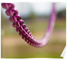 Purple Depth of Field Poster