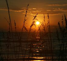 Naples Bay Sunset by Brenda Dow