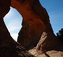Morning Light ~ Arches National Park, Utah USA by Vicki Pelham