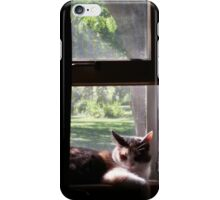 Trixie Kitty in the Window Sill iPhone Case/Skin