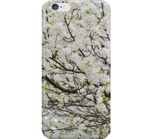 Pear Blossom Tree Canopy iPhone Case/Skin