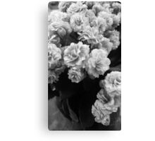 Flowers - photography Canvas Print