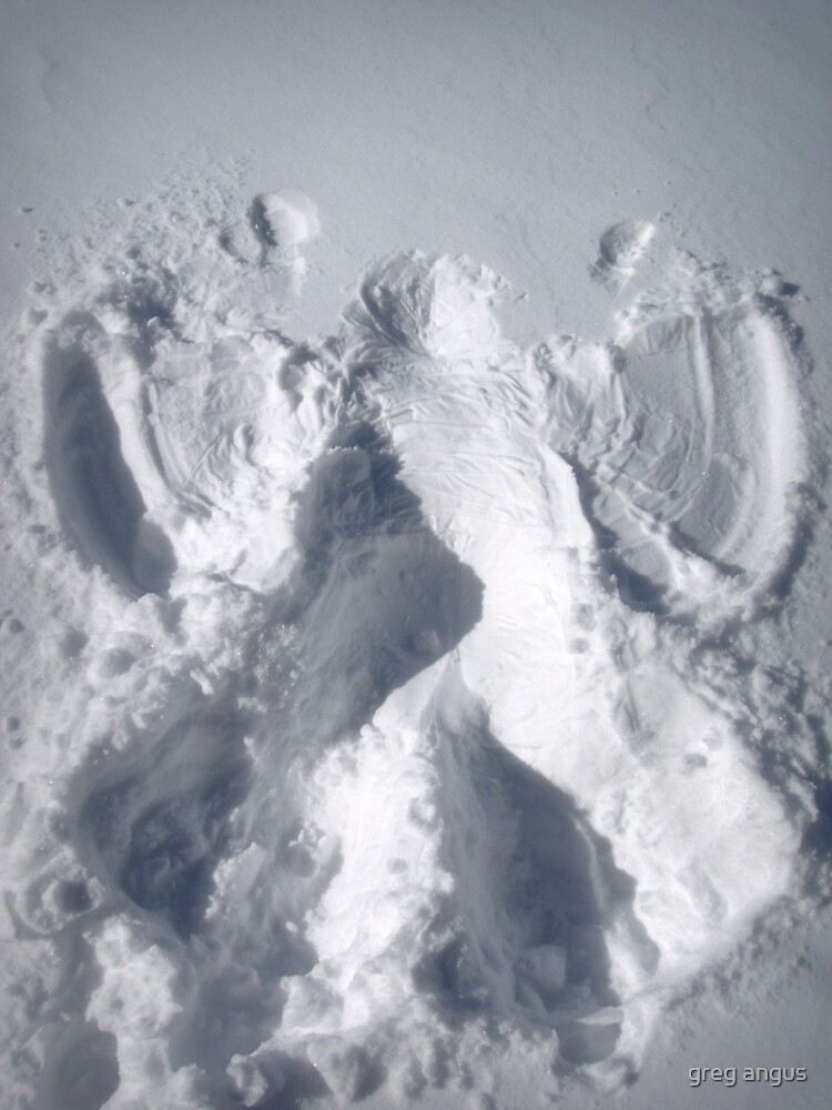 snow angel by greg angus