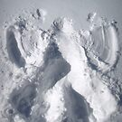 snow angel by greg angus