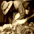 shearing in spring by greg angus