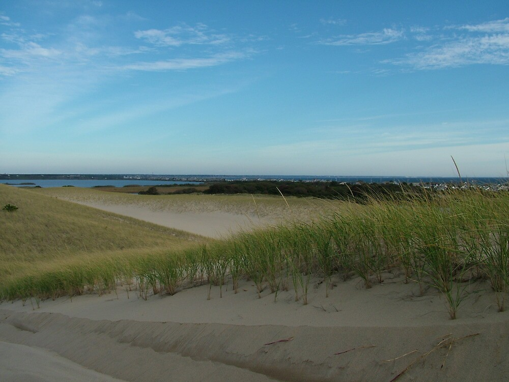The dunes of Provincetown by fieldsix