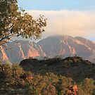 Mount Sonder 1 by Cheryl Parkes