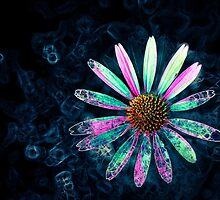 Glow Flower by littleoldhag