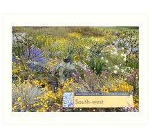 Wildflowers of the South West of Western Australia Art Print