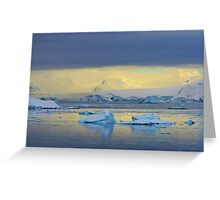 Morning Light, Antarctica Greeting Card