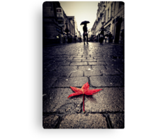 Catch A Falling Star Canvas Print