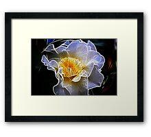 Fractalicious Camellia Framed Print