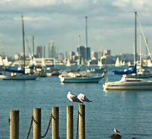 Williamstown Beach, Melbourne Australia by ChiaraLily