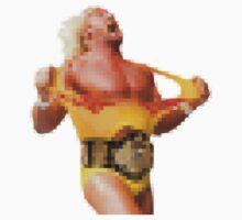 Pixelated Hogan by sharkyj