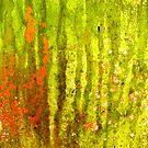 Forest Mist by Kathie Nichols