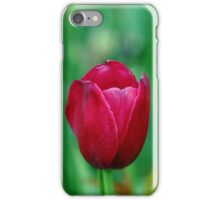 Spring Charmer iPhone Case/Skin