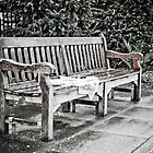 Drenched Newspaper on Bench by Stanley Tjhie