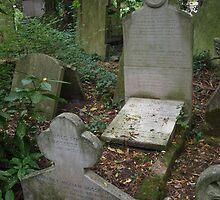 Rossetti Siddal grave by liverecs